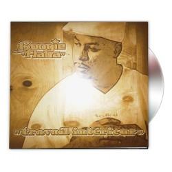 """Album """"TRAVAIL INTERIEUR"""" Boogie FLAHA"""